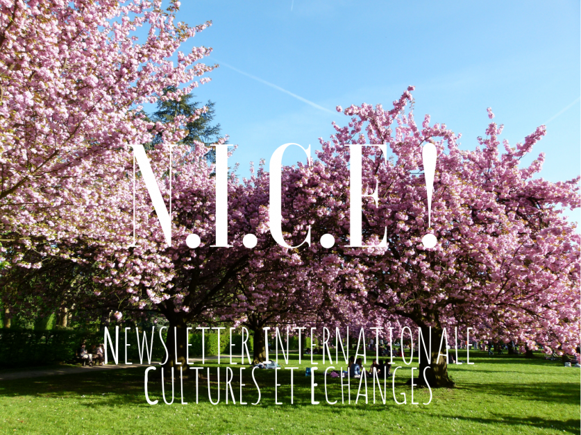 Cherry Blossoms site de rencontres en ligne iconosquare datant